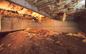 Messy, moldy crawl space