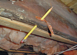 Destroyed crawl space structural wood in Whitchurch-Stouffville