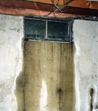 Flooding through basement windows in a Burnt River home.