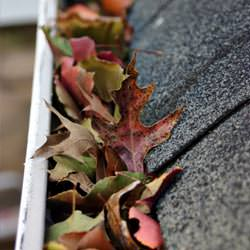 Clogged gutters filled with fall leaves  in Cambray