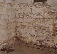 Peeling, Chipping, Basement Wall Coatings in Bolsover